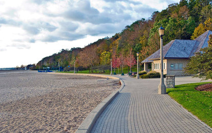 Forest Park Beach Restoration